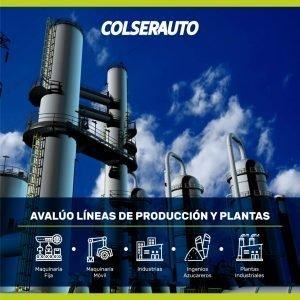 Avalúo en líneas de producción y plantas