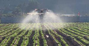 aplicaciones agrícolas con drones
